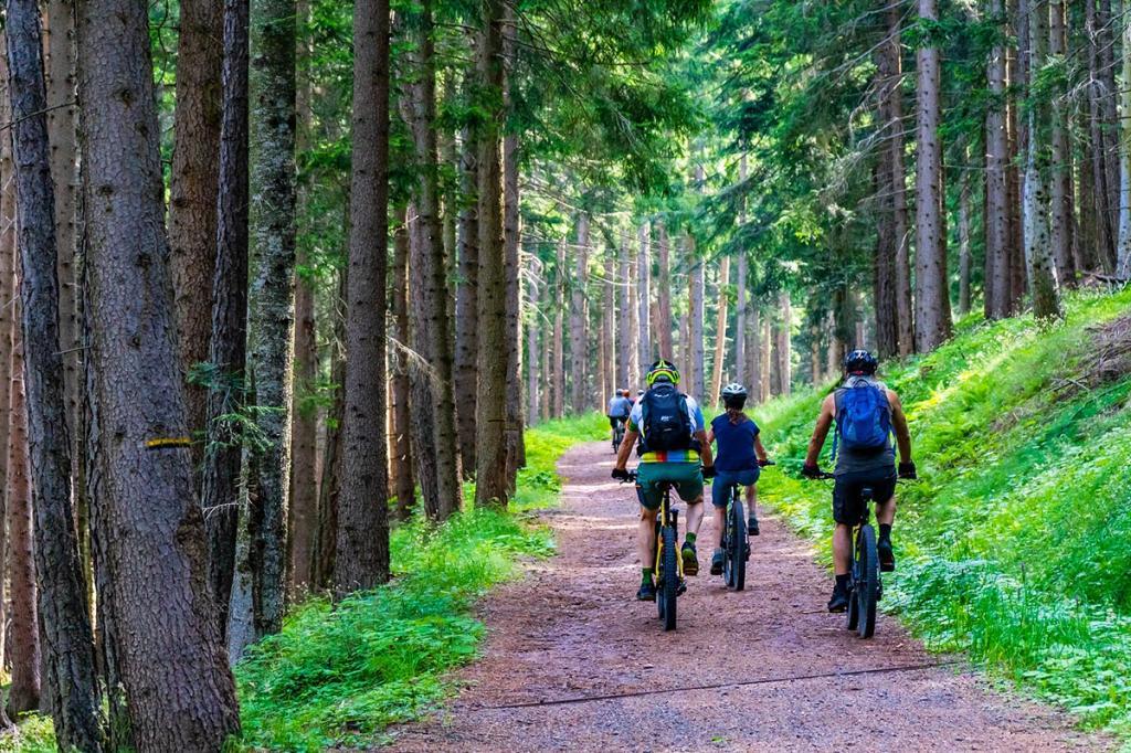 e-mountain-bike-trentino val-di-sole