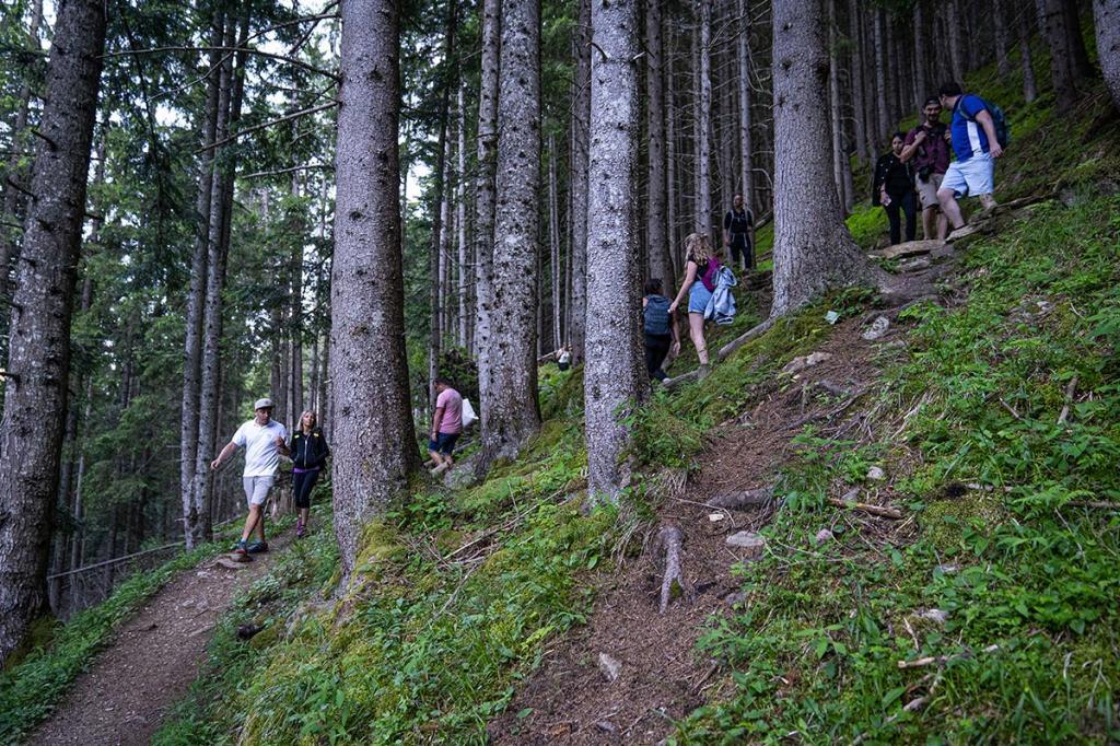 park-therapy abbracciare-gli-alberi vacanza-natura-trentino