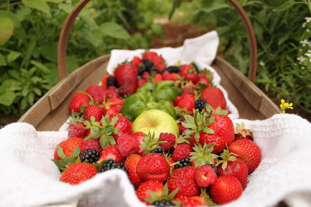 strawberries-552238 1920