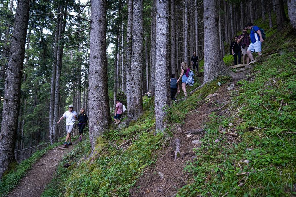 treehugging abbracciare-gli-alberi benessere-in-natura Terme-di-Rabbi5
