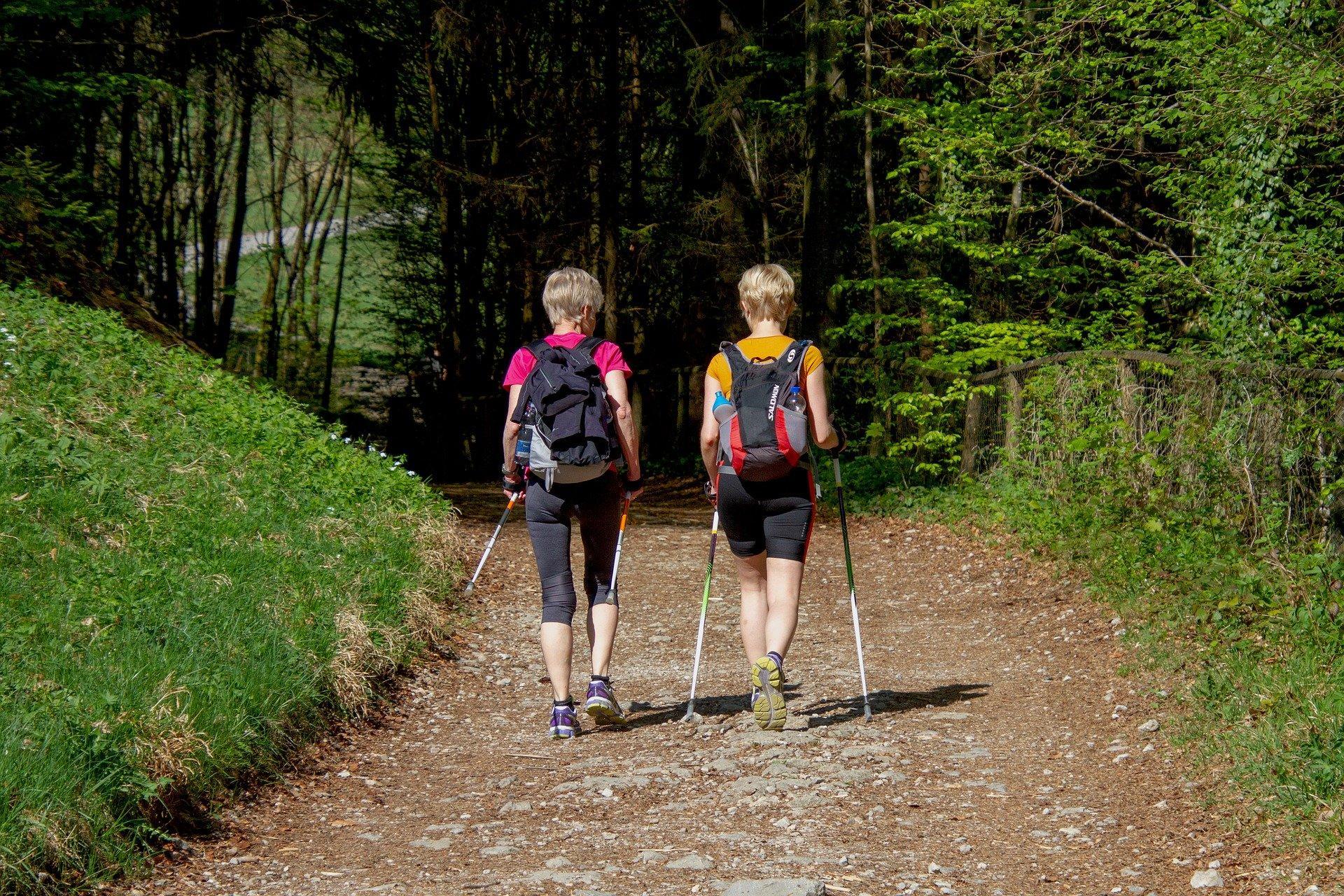 nordic_walking_in_trentino_val_di_sole_e_val_di_rabbi.jpg